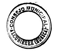 Consejo Municipal.jpg