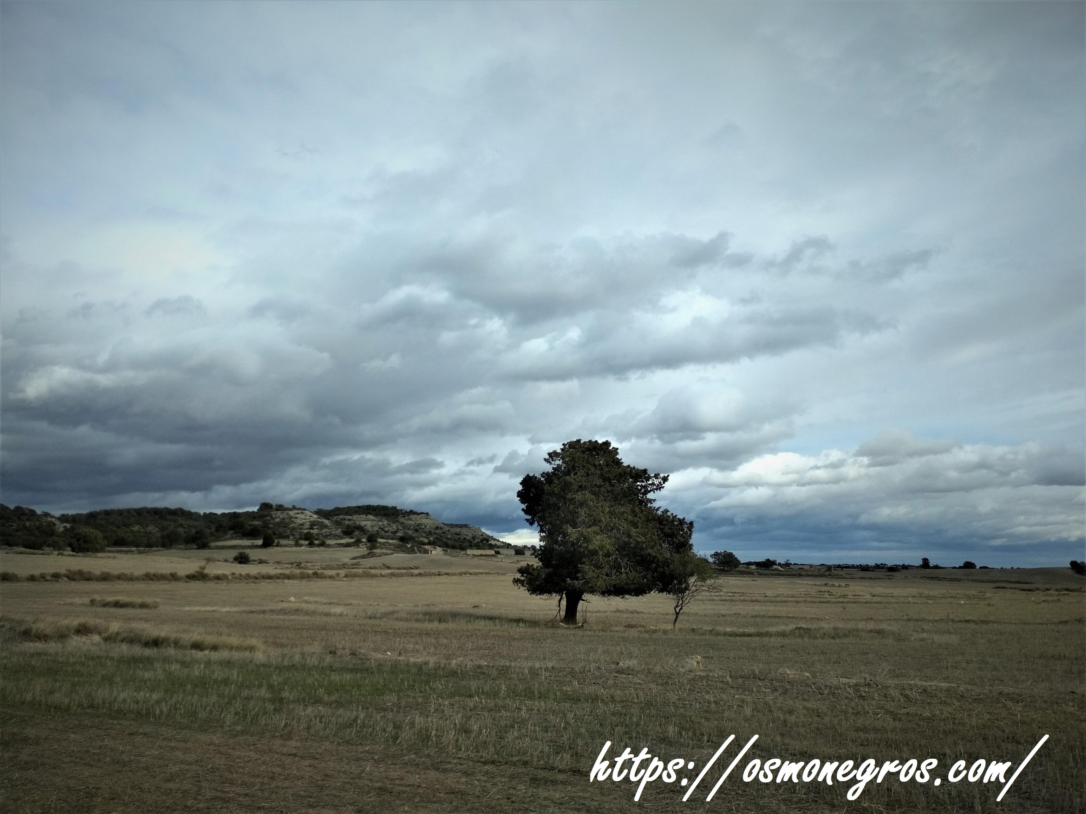 Os Monegros (1)