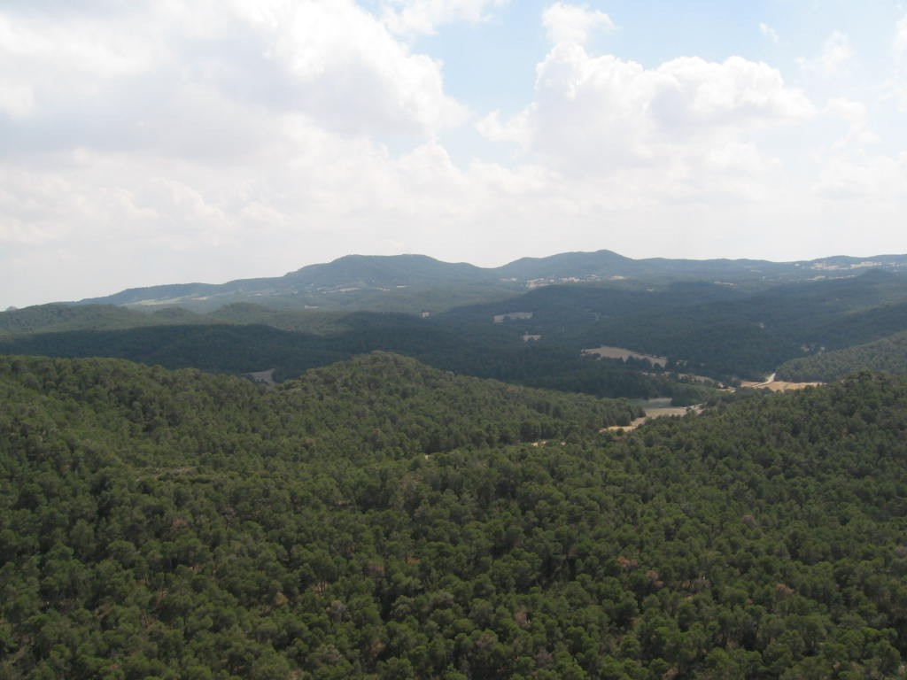 Sierra Alcubierre (1).JPG